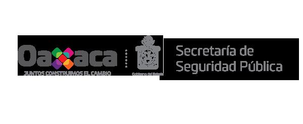 Secretaría de Seguridad Pública